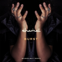 PREMIERE: Wankelmut brings new energy to SHAMAÏ's - 'BURST'.